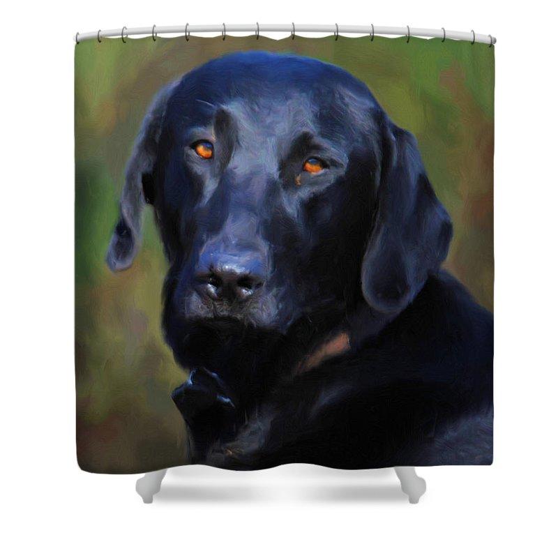 Labrador Shower Curtain featuring the painting Black Lab Portrait by Jai Johnson