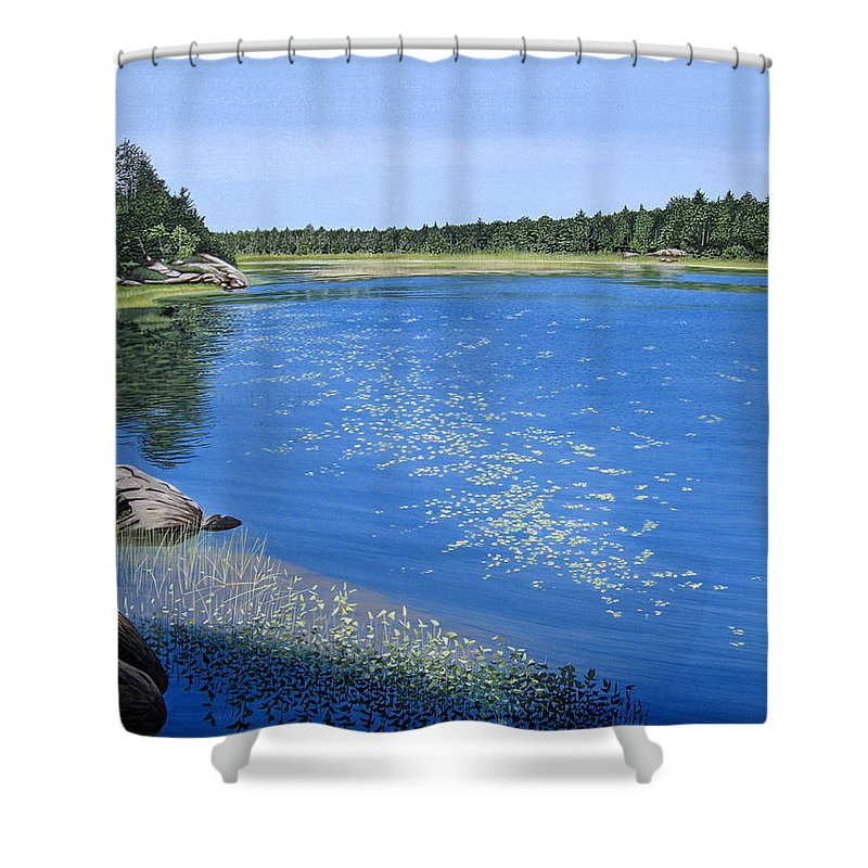 Landscapes Shower Curtain featuring the painting Blackstone Bog by Kenneth M Kirsch