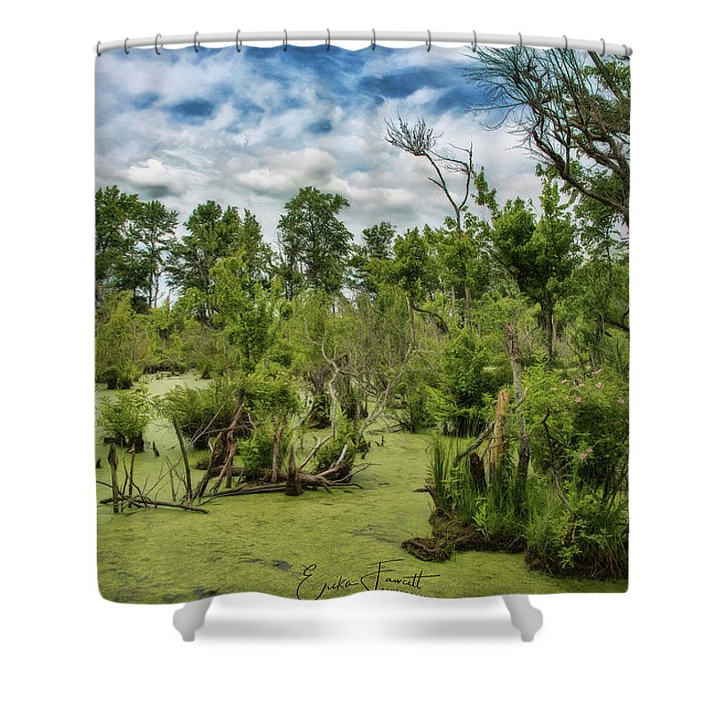 Blackwater Shower Curtain featuring the photograph Blackwater Swamp by Erika Fawcett