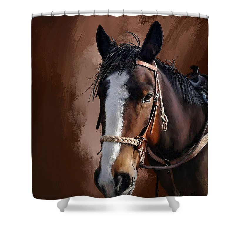 Corel Painter 18 Shower Curtain featuring the digital art Blaze by Susan Kinney