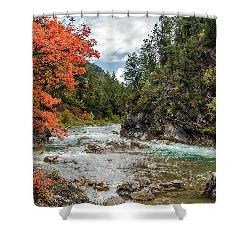 Blazing. Red. Mountain Maple Shower Curtain featuring the photograph Blazing Red Mountain Maple, Greys River by Daryl L Hunter