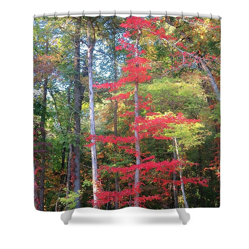 Arkansas Shower Curtain featuring the photograph Blazing Red by Sandra McClure