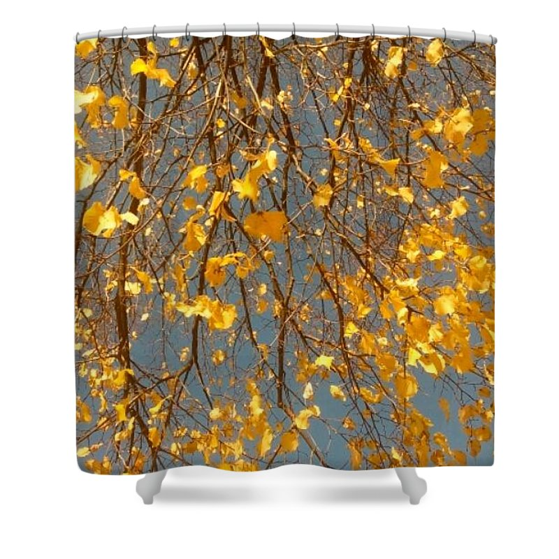 Shower Curtain featuring the photograph Blessings by Alexandra Felecan