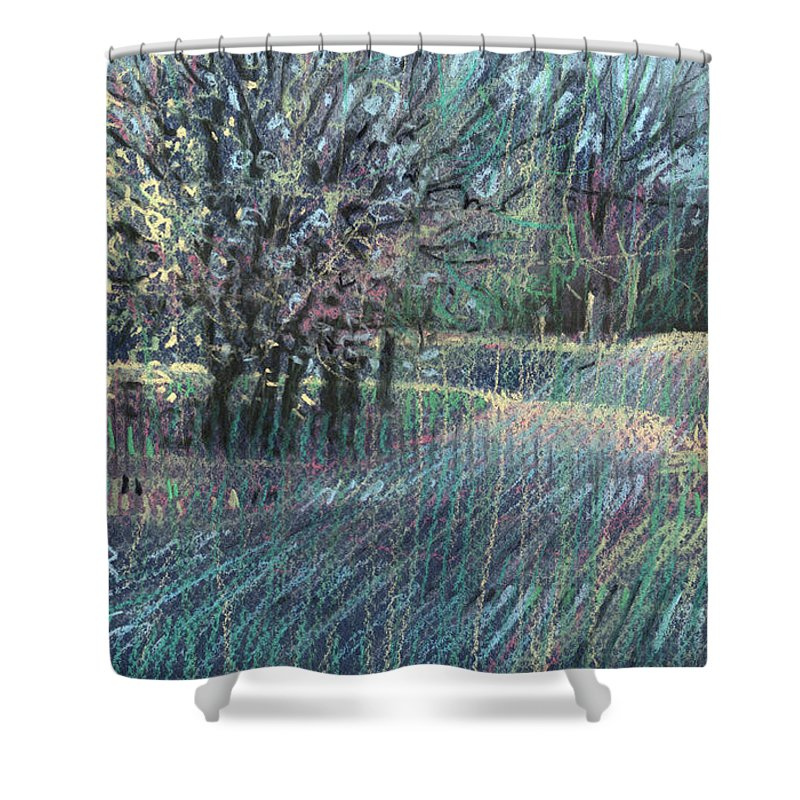 Bradford Pear Shower Curtain featuring the drawing Blooming Bradford by Donald Maier