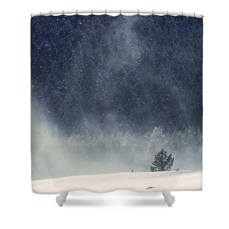 Winter Shower Curtain featuring the photograph Blowing Snow by Carolyn Fox