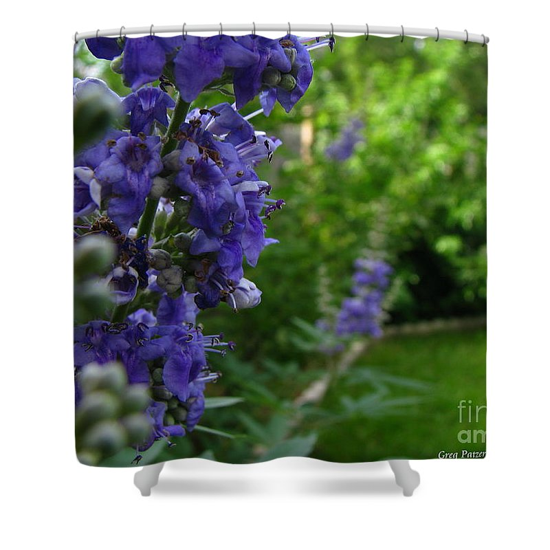 Art For The Wall...patzer Photography Shower Curtain featuring the photograph Blue Butterfly by Greg Patzer