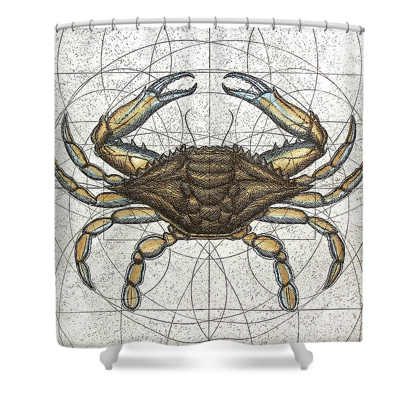 Bay Shower Curtains