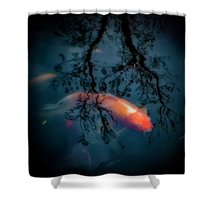 Koi Shower Curtain featuring the photograph Blue Dreams by Esther Kather