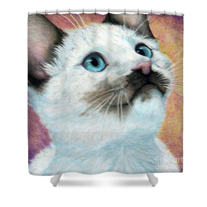 Cats Shower Curtain featuring the drawing Blue Eyed Prayer by Beverly Fuqua