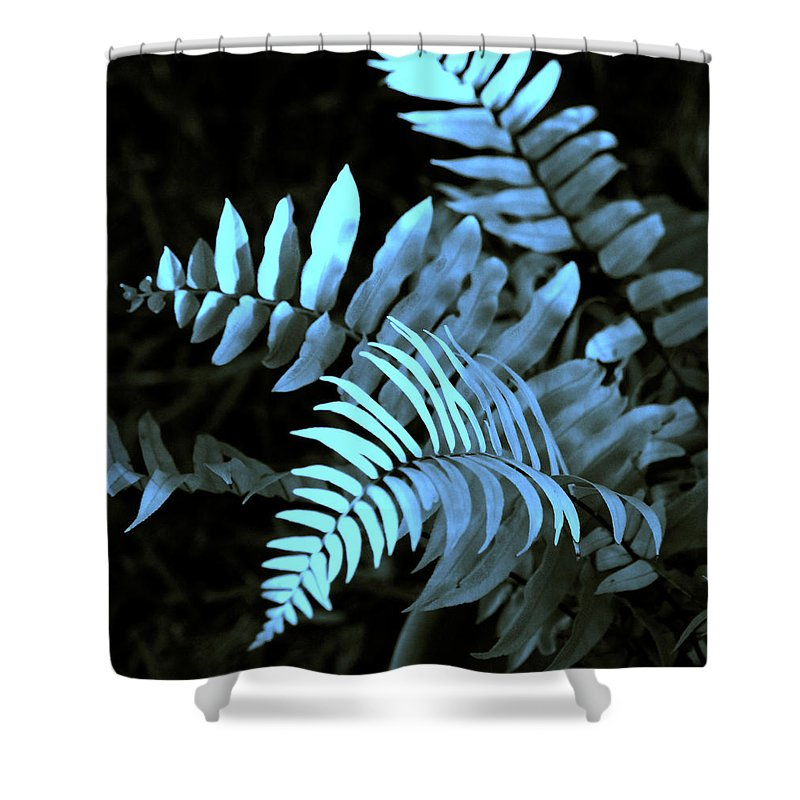 Abstract Shower Curtain featuring the photograph Blue Fern by Susanne Van Hulst