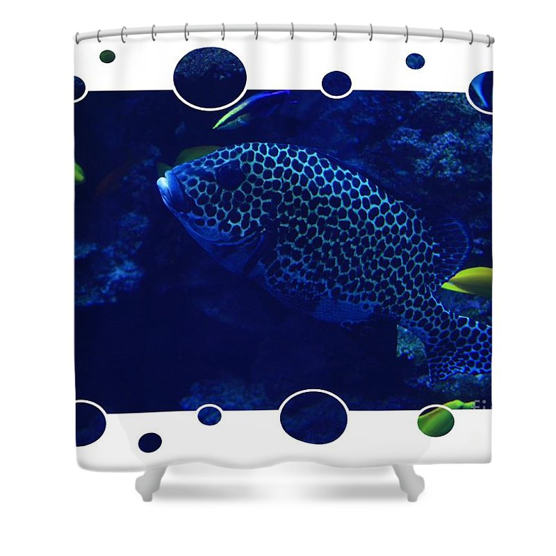 Blue Shower Curtain featuring the photograph Blue Fish by Carol Groenen