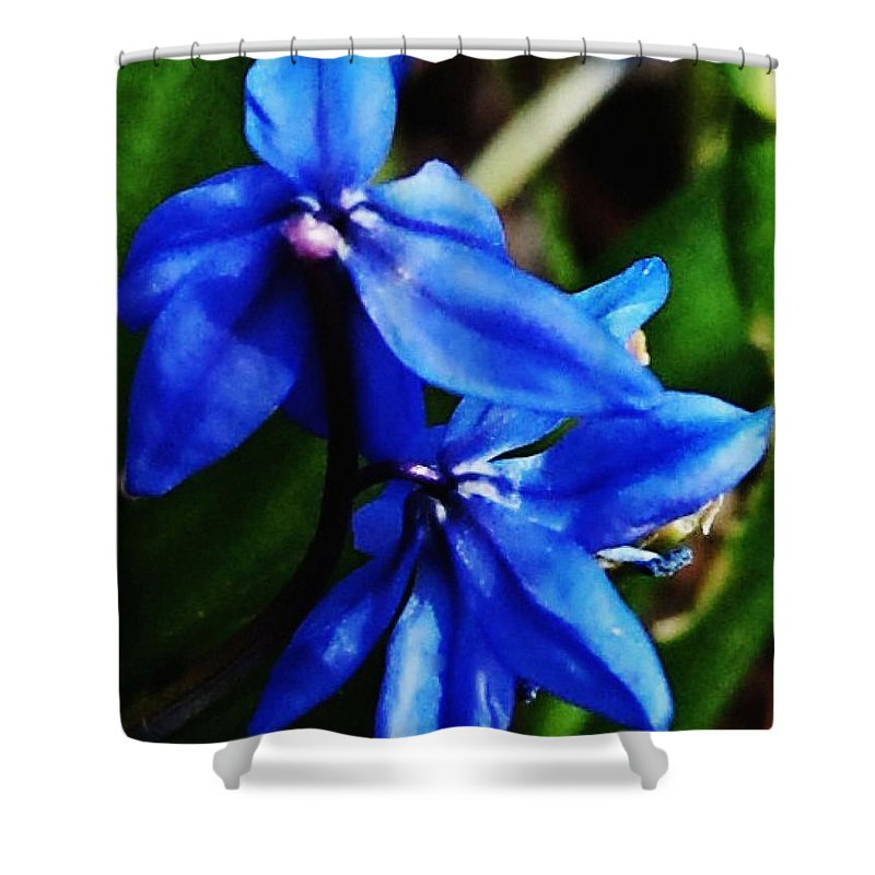 Digital Photo Shower Curtain featuring the photograph Blue Floral by David Lane