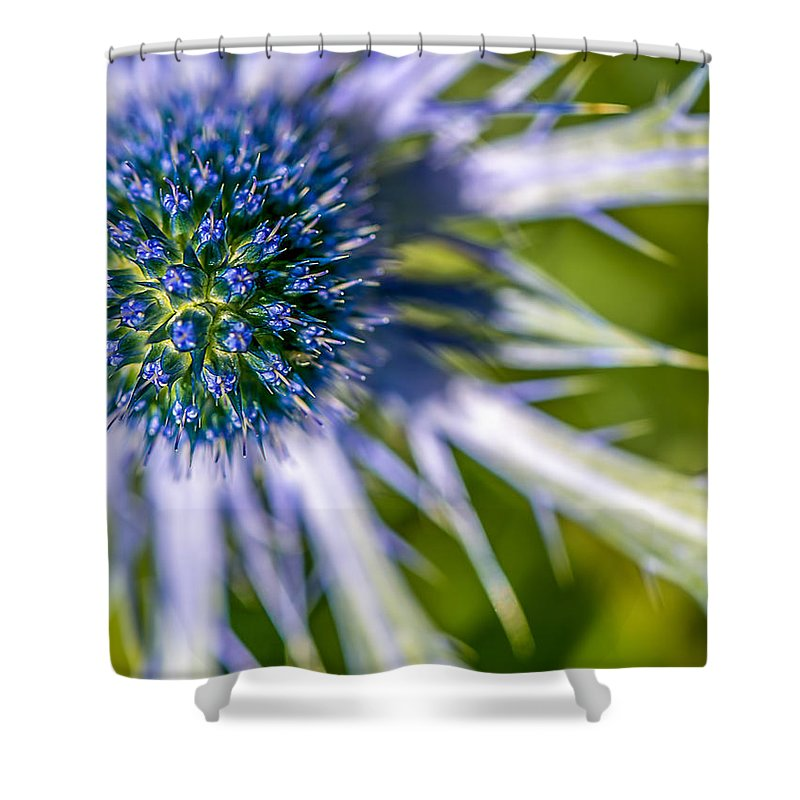 Blue Shower Curtain featuring the photograph Blue Flower by Joshua Fischl