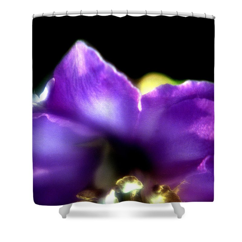 Flower Shower Curtain featuring the photograph Blue Flower by Lee Santa