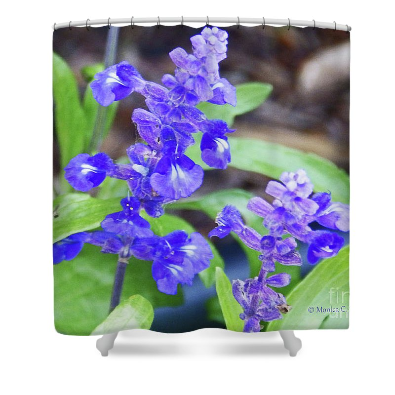 Blue Flowers Shower Curtain featuring the photograph Blue Flowers B4 by Monica C Stovall