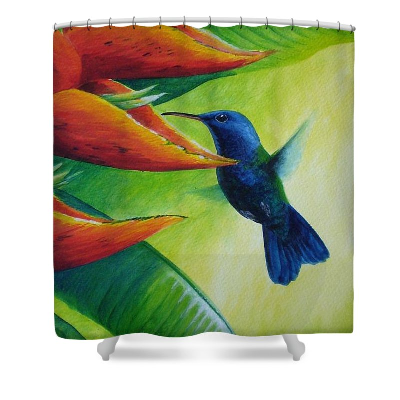 Blue-headed Hummingbird Shower Curtain featuring the painting Blue-headed Hummingbird by Christopher Cox