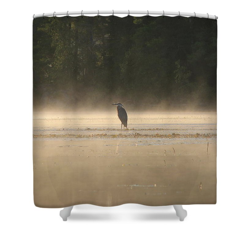 Blue Heron Water Fog Shower Curtain featuring the photograph Blue Heron Morning by Christopher Brown