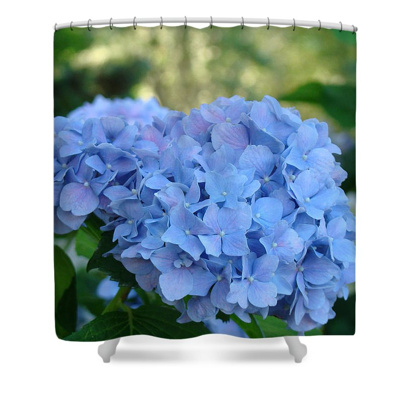 Hydrangea Shower Curtain featuring the photograph Blue Hydrangea Flower Art Prints Baslee Troutman by Baslee Troutman