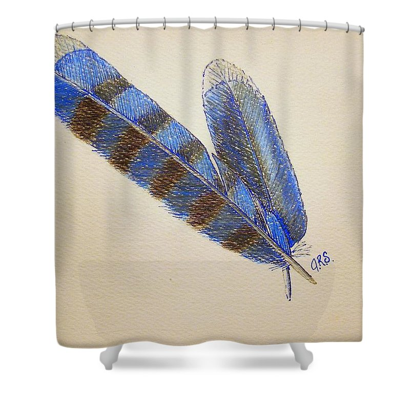 Stationery Card Shower Curtain featuring the drawing Blue Jay Feathers by J R Seymour