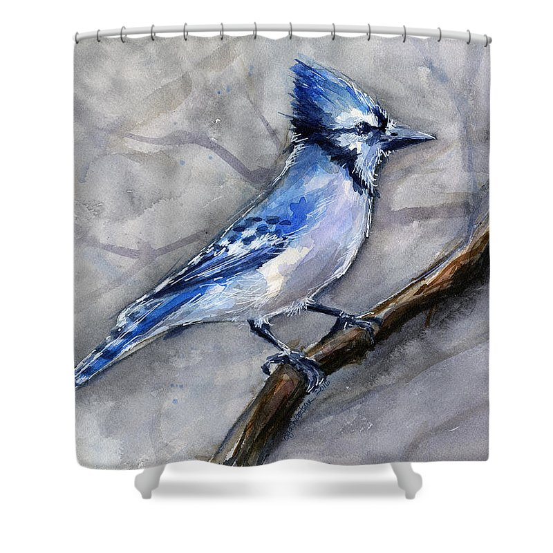 Animal Shower Curtain featuring the painting Blue Jay Watercolor by Olga Shvartsur