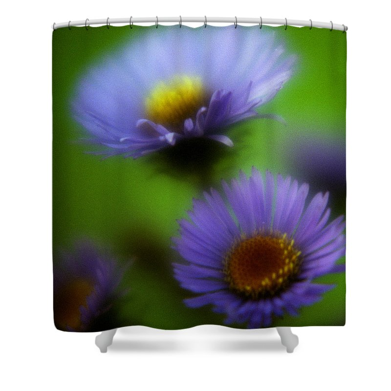 Macrophotography Shower Curtain featuring the photograph Blue On Green 2 by Lee Santa