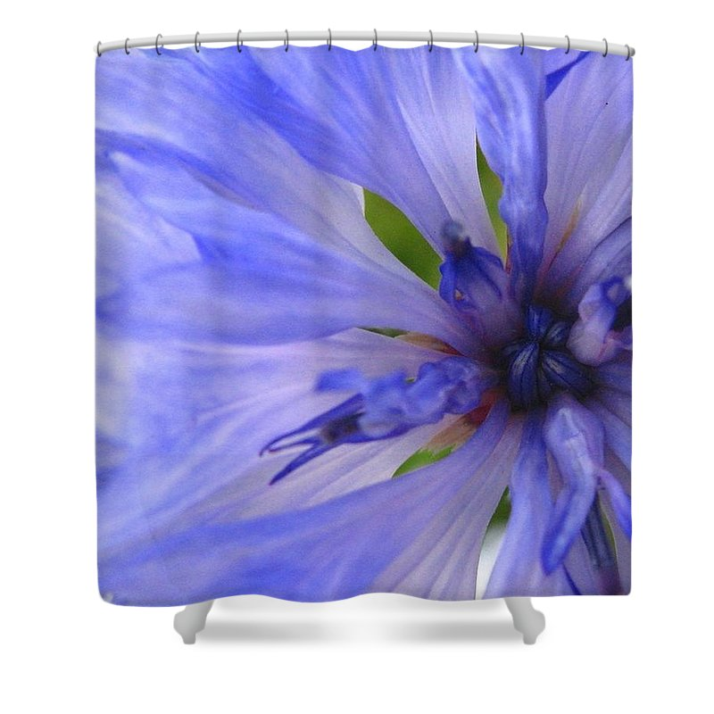 Flower Shower Curtain featuring the photograph Blue Princess by Rhonda Barrett
