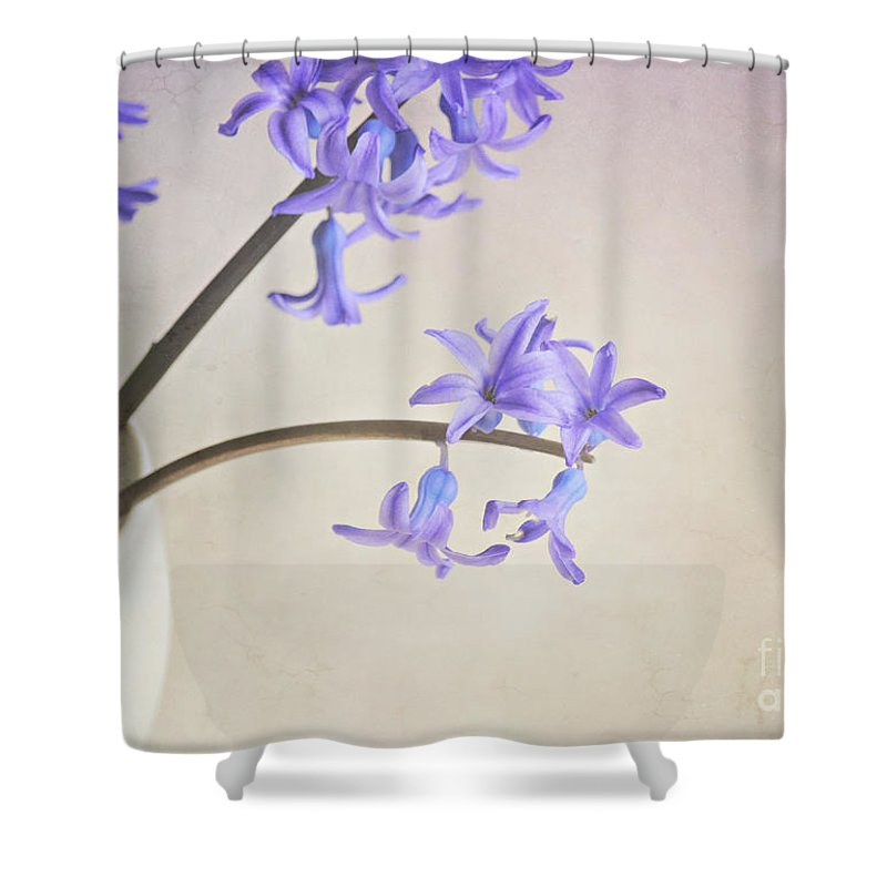 Still Life Shower Curtain featuring the photograph Blue Purple Flowers In White China Cup by Lyn Randle
