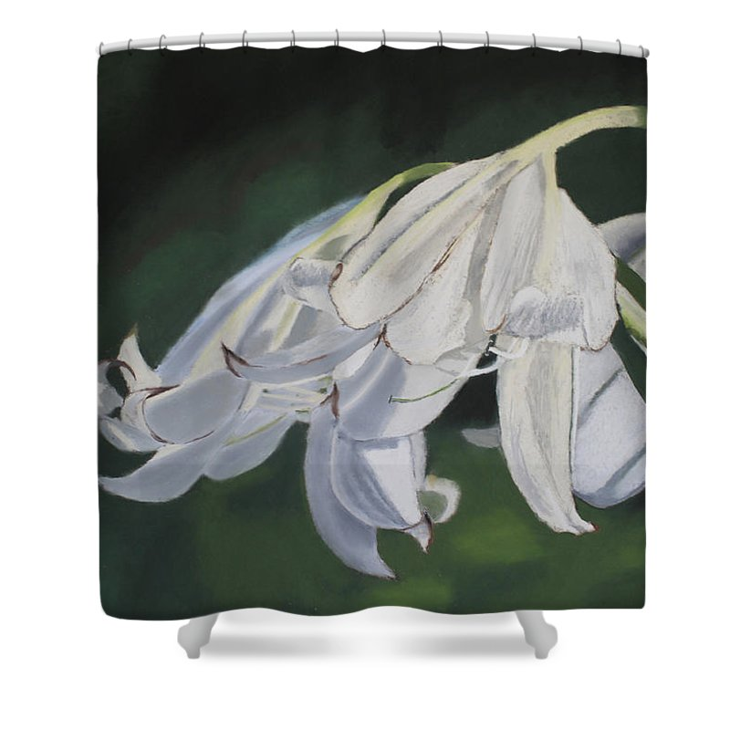 Flowers Shower Curtain featuring the painting Blue Ridge Lilly by D Turner