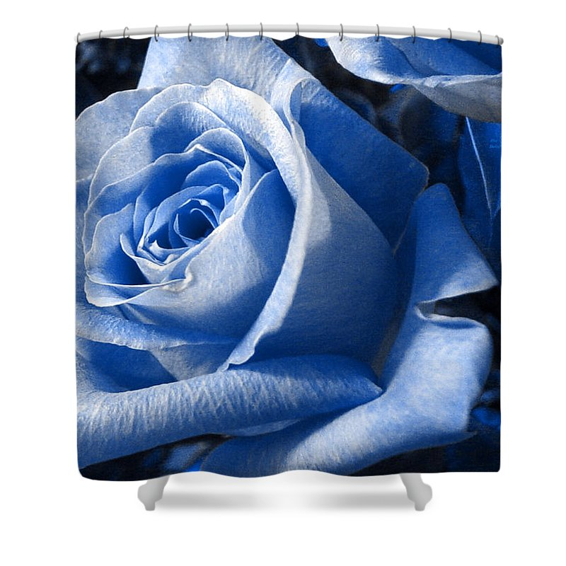 Blue Shower Curtain featuring the photograph Blue Rose by Shelley Jones