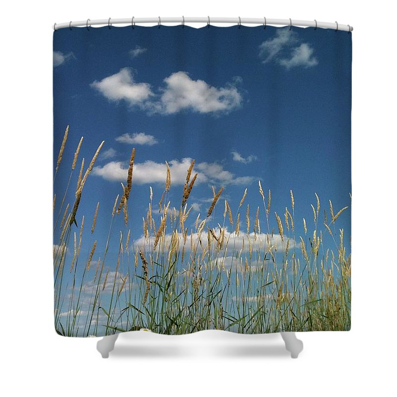 Shower Curtain featuring the photograph Blue Sky Drive-in by Trish Hale