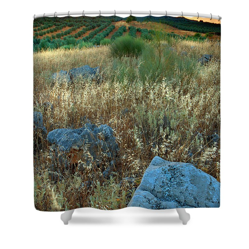Iznajar Shower Curtain featuring the photograph blue stones amongst the olive groves near Iznajar Andalucia Spain by Mal Bray