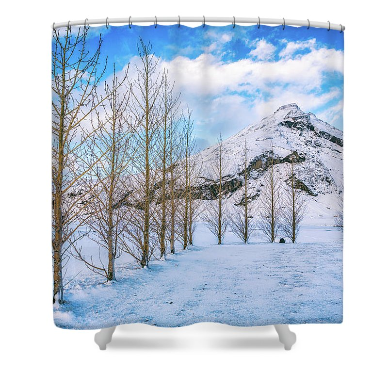 Trees Shower Curtain featuring the photograph Blue Winter Sky by Jean-Claude Ardila