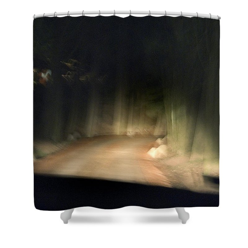 Photography Shower Curtain featuring the photograph Blurry Tuscan Road Seen by Todd Gipstein