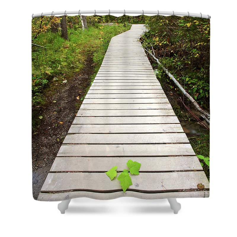 Bushes Shower Curtain featuring the digital art Boardwalk To Backguard Falls In British Columbia by Mark Duffy