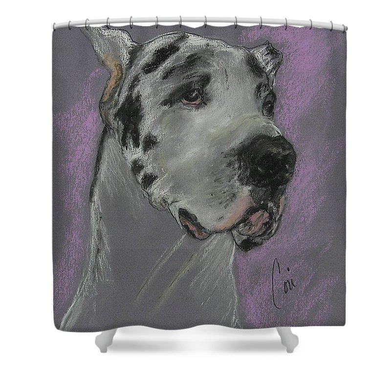 Great Dane Shower Curtain featuring the drawing Bodhi's Mystique by Cori Solomon