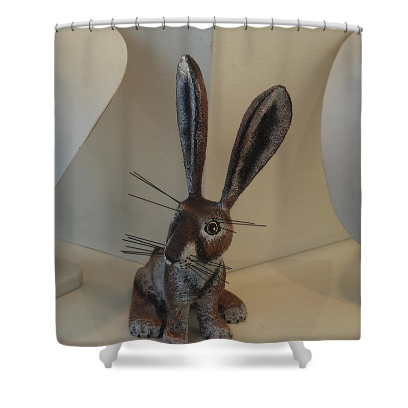 Rabbit Shower Curtain featuring the photograph Boink Rabbit by Rob Hans