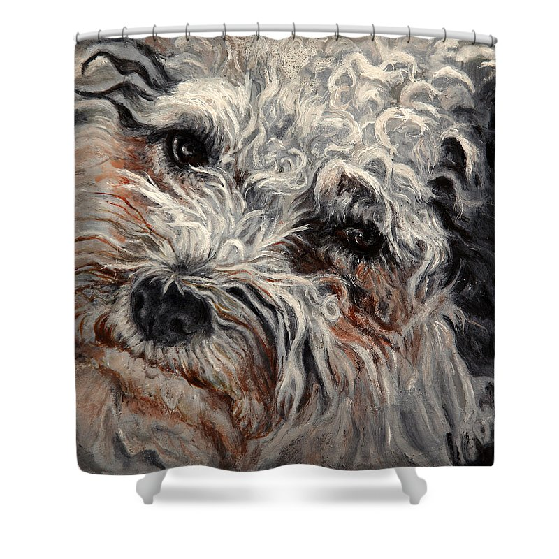Pets Shower Curtain featuring the painting Bolognese Breed by Portraits By NC