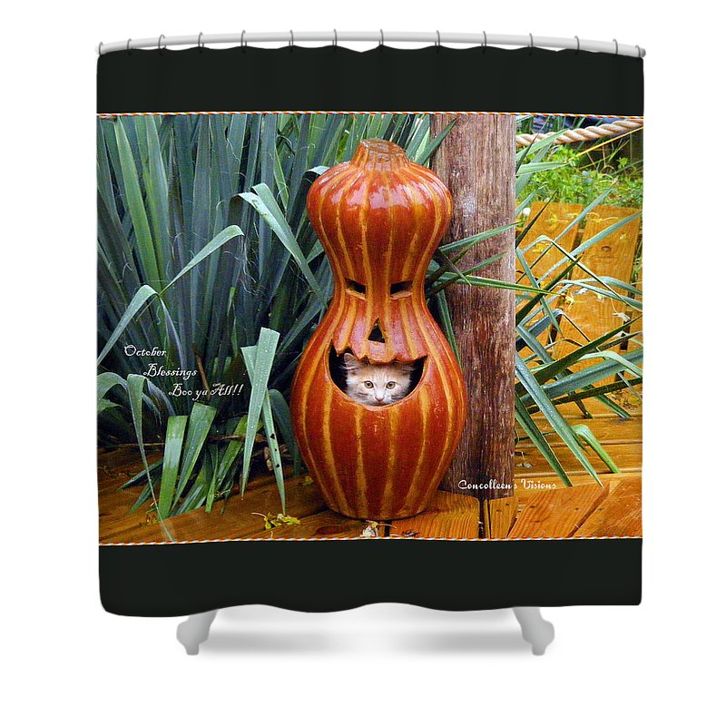 Kansas Shower Curtain featuring the photograph Boo Ya All by Concolleen's Visions Smith