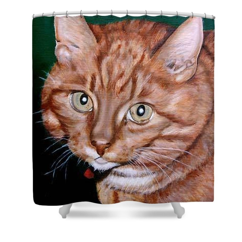 Pets Shower Curtain featuring the painting Boris by Rob De Vries