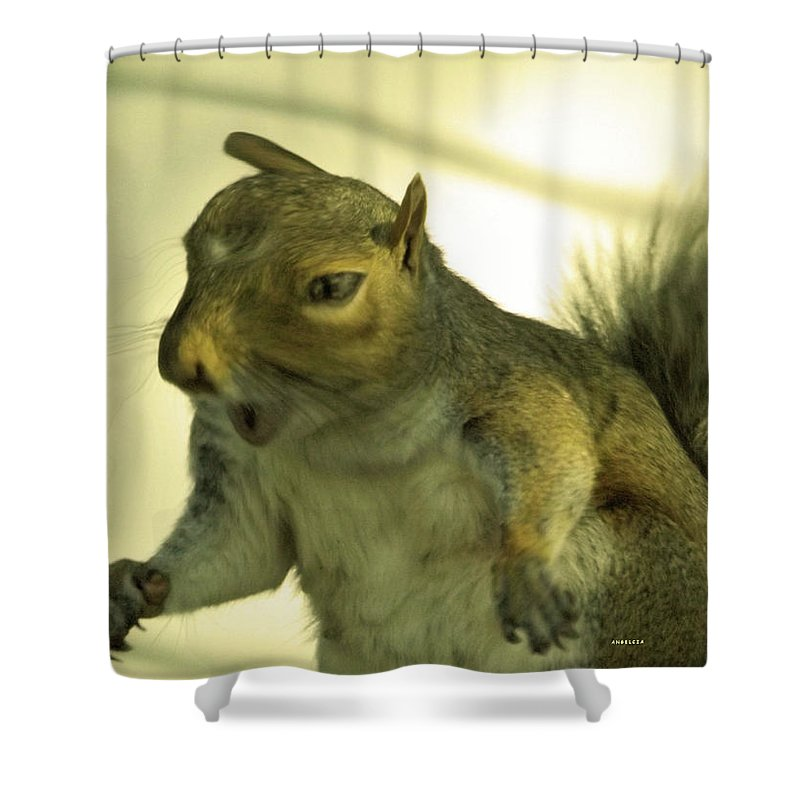 Squirrel Shower Curtain featuring the photograph Bossy Squirrel by Angelcia Wright