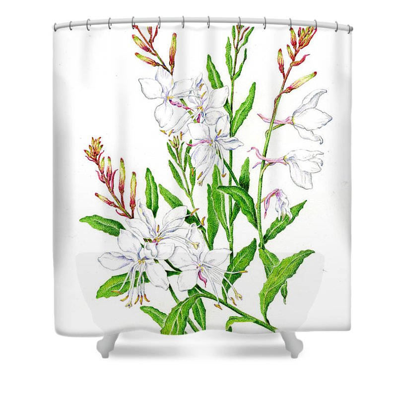 Botanical Shower Curtain Featuring The Painting Illustration Floral By Karla Beatty