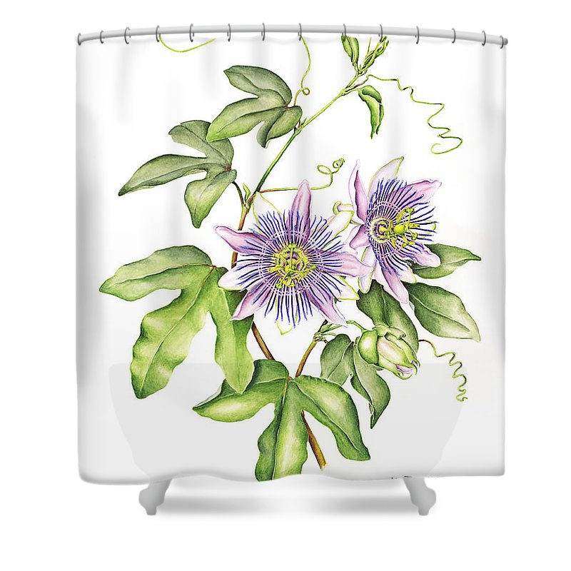 Botanical Illustration Passion Flower Shower Curtain For Sale By