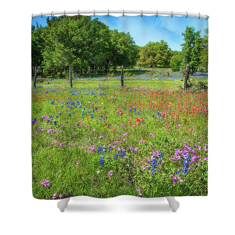 Bluebonnets Shower Curtain featuring the photograph Botanical Variety Show In The Texas Hill Country by Lynn Bauer