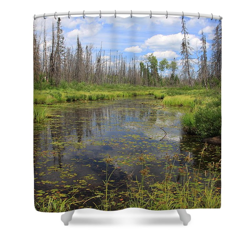 Boundary Waters Minnesota Lake Pond Swamp Nature Forest Park Lake Superior National Forest Shower Curtain featuring the photograph Boundary Waters Beauty by Shari Jardina