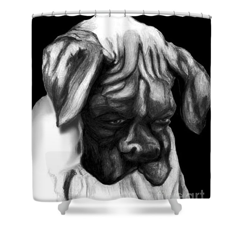 Animals Shower Curtain featuring the painting Boxer Puppy by Portraits By NC