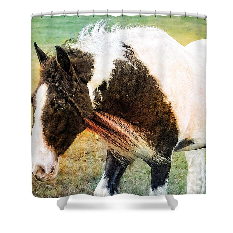 Alicegipsonphotographs Shower Curtain featuring the photograph Braids In Mane by Alice Gipson
