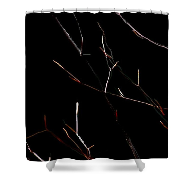 Shower Curtain featuring the digital art Branches In The Dark by David Lane
