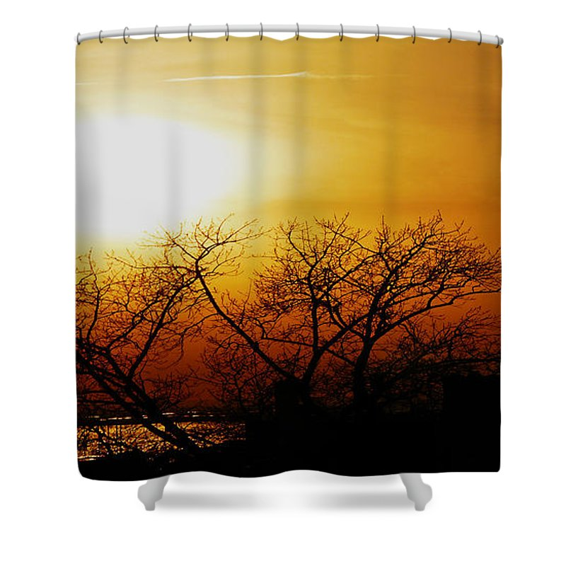 Landscape Shower Curtain featuring the photograph Branches by Kendall Eutemey