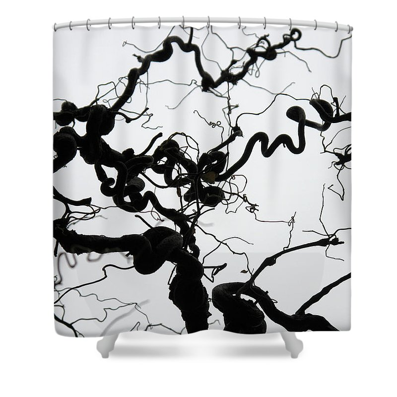 Branches Shower Curtain featuring the photograph Branches by Stefania Levi