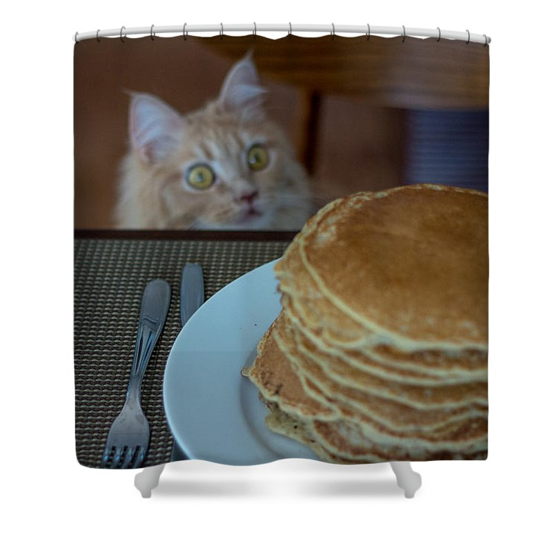 Asia Shower Curtain featuring the photograph Breakfast by Peteris Vaivars